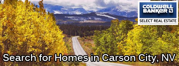 carson city banner