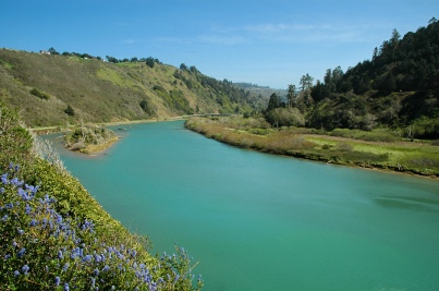 Navarro_River