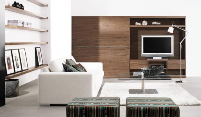 extraordinary-contemporary-living-room-home-design-pic