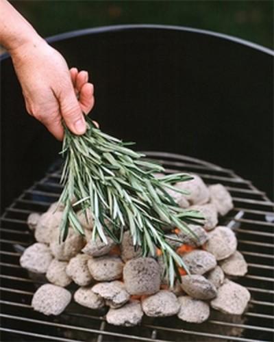 herbs-bbq-coals