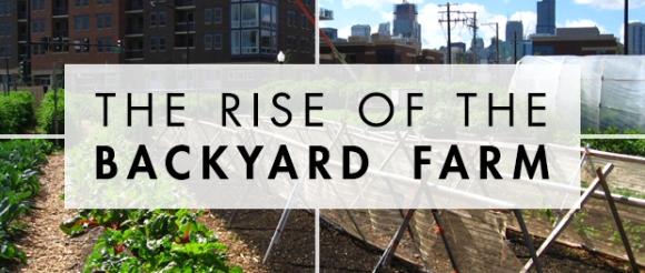 riseofthebackyard