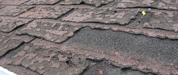 """Failure of asphalt shingles allowing roof leakage"" by DMahalko, Dale Mahalko, Gilman, WI, USA -- Email: dmahalko@gmail.com - Own work. Licensed under CC BY-SA 3.0 via Commons - https://commons.wikimedia.org/wiki/File:Failure_of_asphalt_shingles_allowing_roof_leakage.JPG#/media/File:Failure_of_asphalt_shingles_allowing_roof_leakage.JPG"